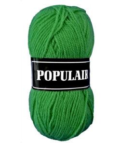populair groen 81 acrylgaren